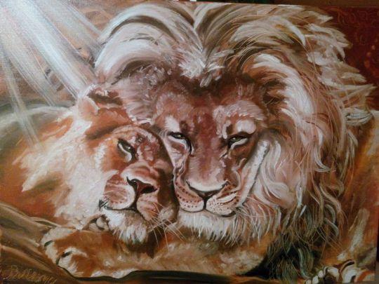 Львы. Нежность.