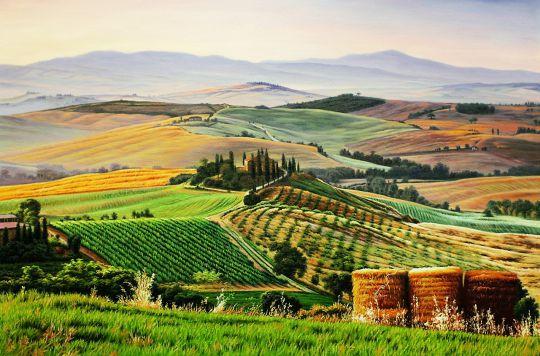 Тосканские поля. Время урожая