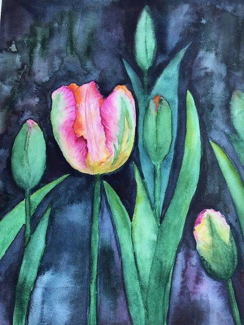 Весна. Первый тюльпан