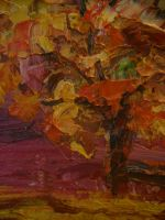 Теплая осень Прованса