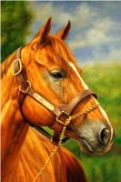 Лошадь.худ.С.Теверин
