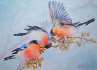 Зимние птицы