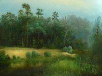 Кочетовский лес, вид с р.Кашма.