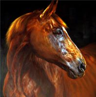 Конь.худ.А.Бруно