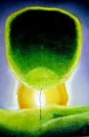 Жажда зелёного цвета 2