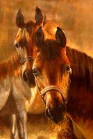 Лошади.худ.А.Бруно
