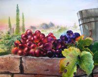 Ароматный виноград