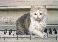 Котенок-пианист