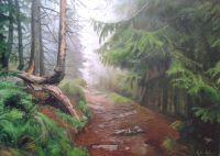 Мокрый лес