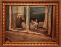 Кот в окне