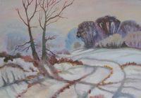 Снежный пейзаж