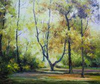 Солнечным днем в лесу