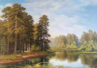 Сосны на берегу у озера