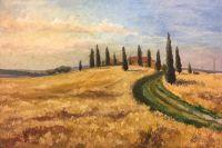 Италия,Тоскана, Ржаное поле