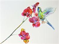Orchid bird