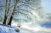 Зимнее кружево инея