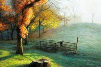 Осень. Дни прощального тепла…