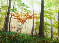 Ползут по деревьям туманы…