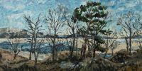 Вид Жигулёвское море весной