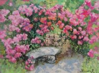 Розовый полдень