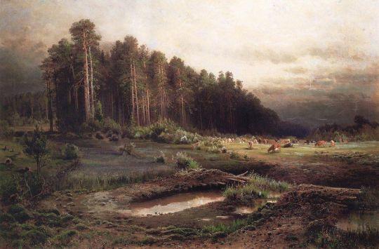 Лосиный остров в Сокольниках1