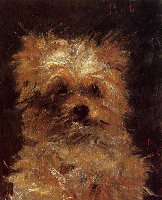 Голова собаки, Боба