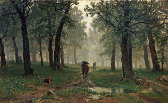 Дождь в дубовом лесу.