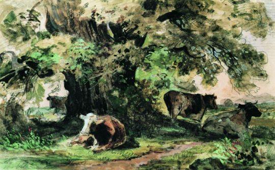 Коровы под дубом.