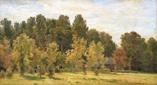 Лесная поляна (Полянка).