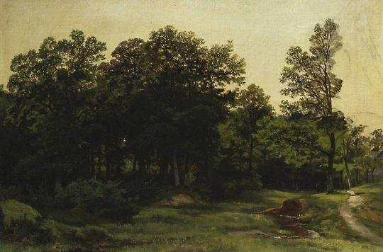 Лиственный лес.