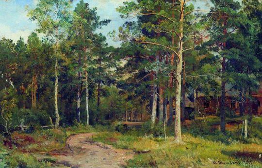 Осенний пейзаж. Дорожка в лесу.
