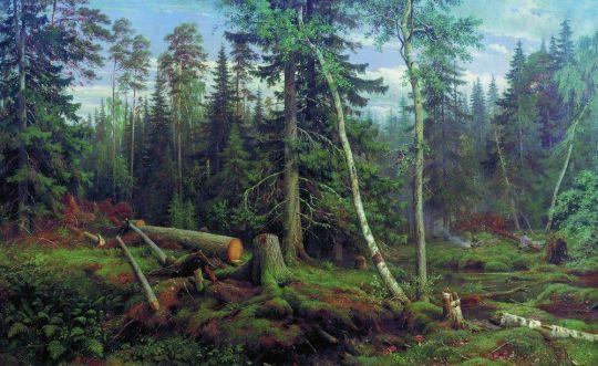 Рубка леса.