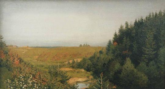 Пейзаж с лесной рекой.