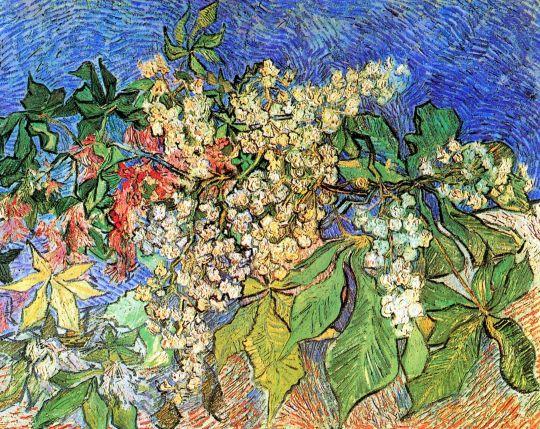 Ветви цветущего каштана