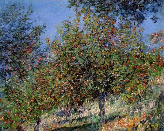 Яблони на холме Шантемесле