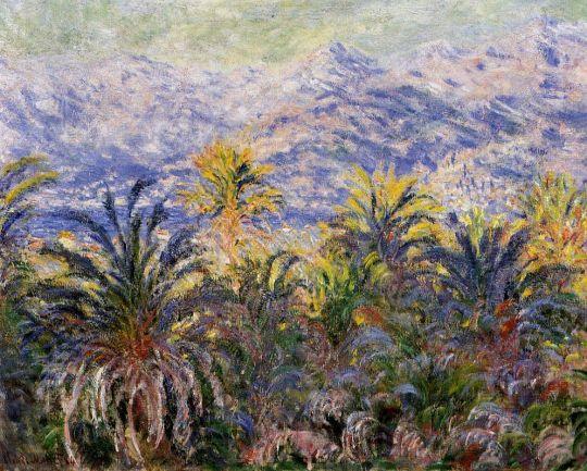 Пальмовые деревья в Бордигере