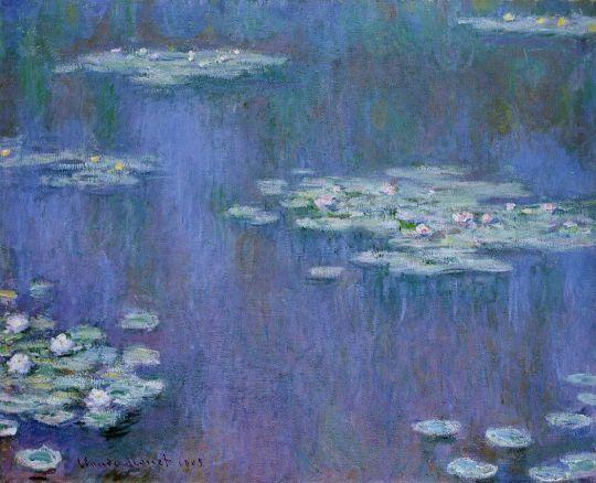 Водяные лилии 15