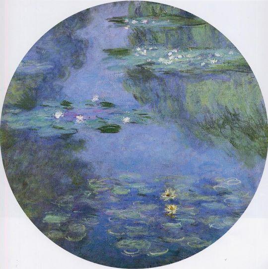 Водяные лилии 16