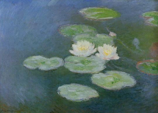 Водяные лилии (исследование)