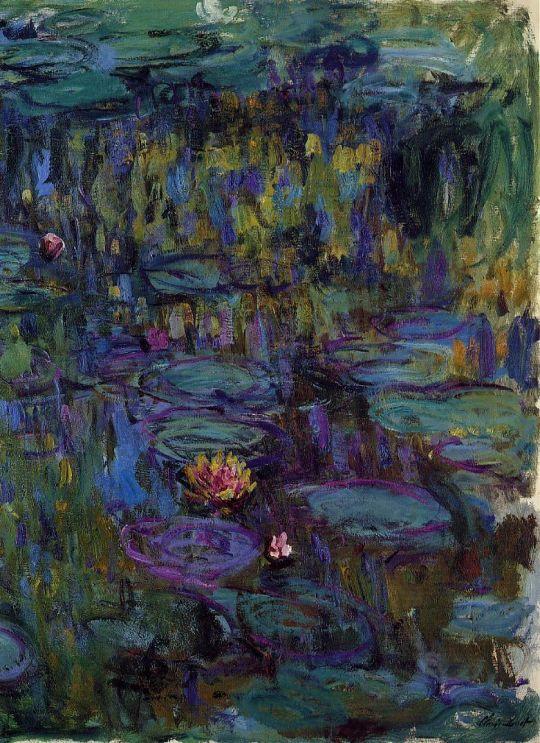 Водяные лилии 31