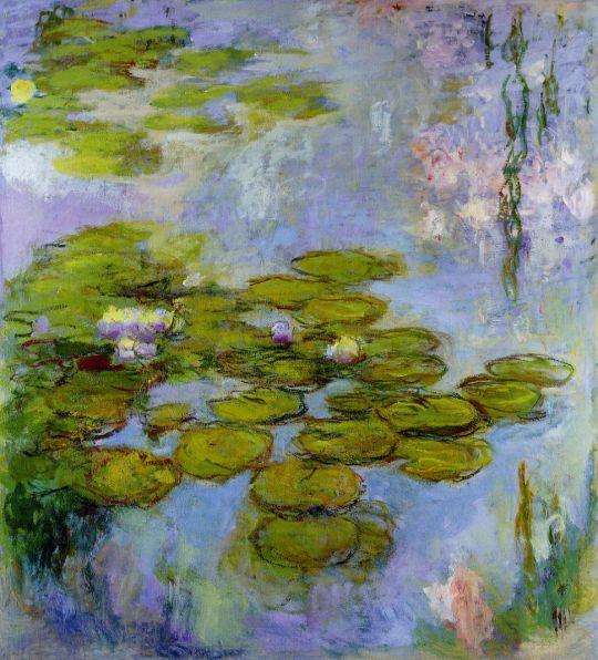 Водяные лилии 51