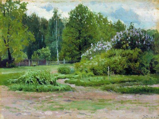 Сирень в парке