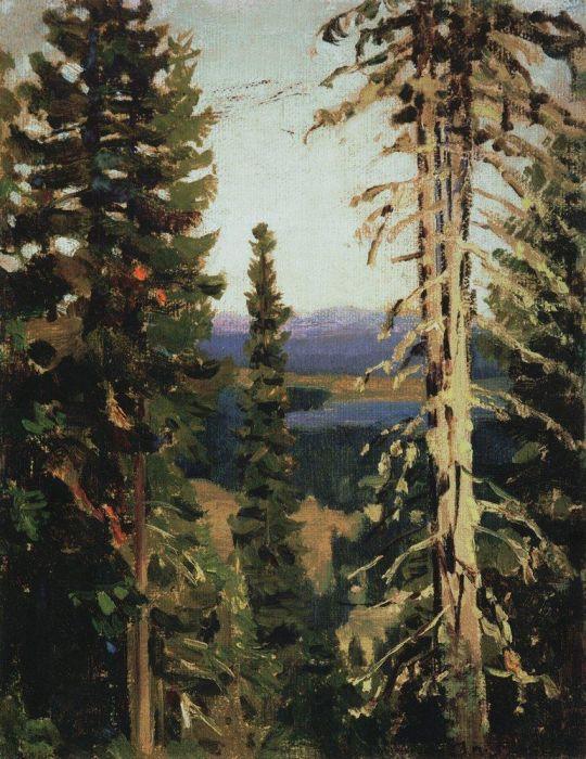 Лес на горе Благодать. Средний Урал.