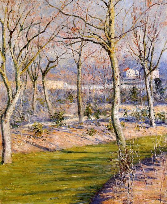 Сад в Петит Женневилиер зимой