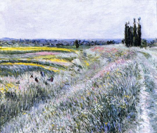 Равнина Женневилиер, тополя