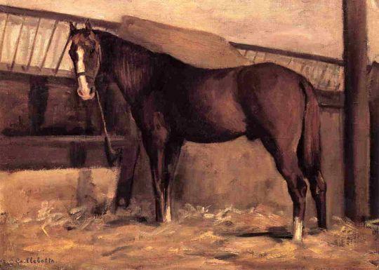 Йеррес, красный залив, лошадь в конюшне