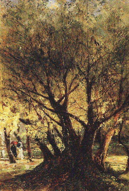 Оливы в Ментоне