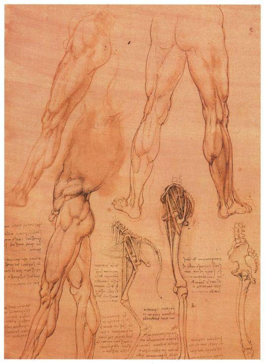 Рисунок 107