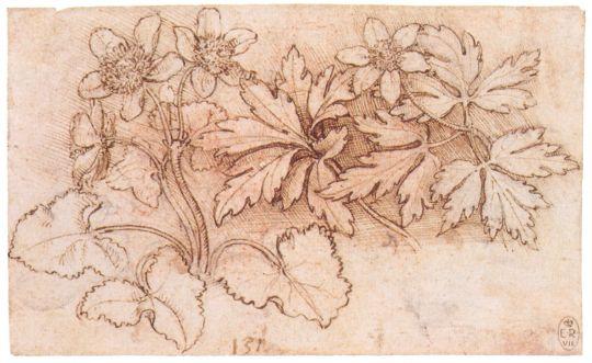 Рисунок 120