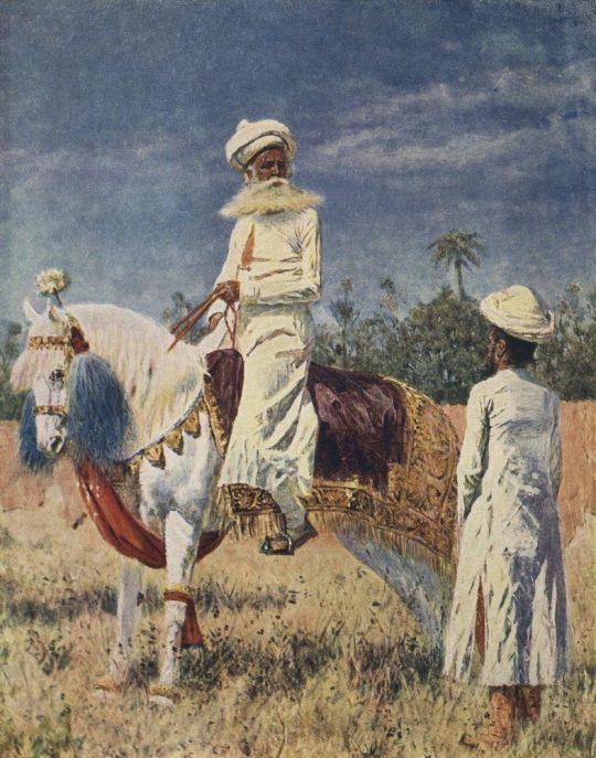 Всадник в Джайпуре